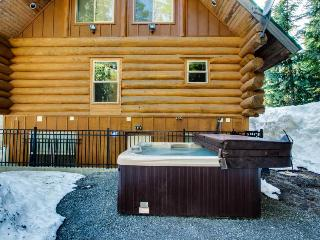 Big Bear Cabin and Little Bear Cabin - Government Camp vacation rentals