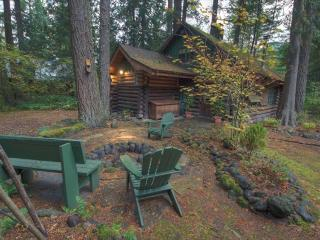 Zoe's Log Cabin - Government Camp vacation rentals