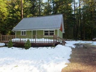 Mount Hood Cabin-NEW HOT TUB - Government Camp vacation rentals