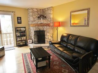 East Vail Getaway - Beaver Creek vacation rentals