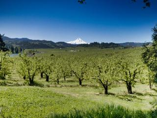 Orchard View Estate - Mount Hood vacation rentals