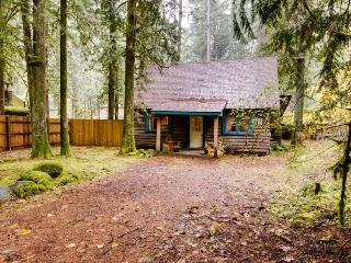 Old Smokey Cabin - Government Camp vacation rentals
