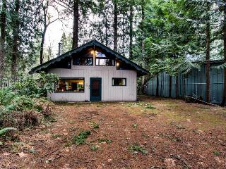 Retreat on the Salmon - Government Camp vacation rentals