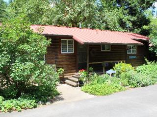 Molalla River Cottage - Government Camp vacation rentals