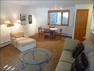 Great Condo for Family Vacations - All the Comforts of Home (23849) - Vail vacation rentals