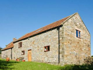 ORCHARD COTTAGE, pet-friendly, beautiful views, great location, near Goathland, Ref 22015 - Goathland vacation rentals