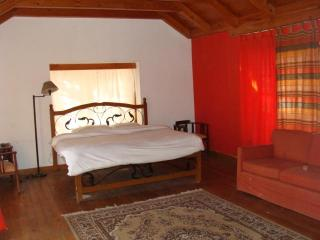 Central Cottage Manali - Manali vacation rentals