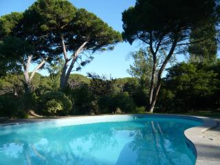 The Clearing - Estoril vacation rentals