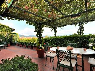 Penthouse apartment in Florence, wonderful terrace - Florence vacation rentals