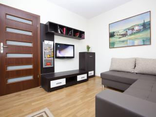 MODERN - LUXURY Apartment in Cracow City Center !! - Southern Poland vacation rentals