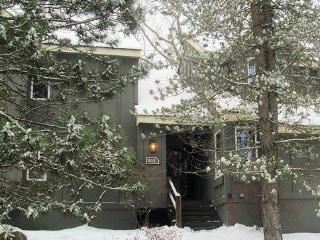202 Snow Ridge Village~ At Jack Frost Ski Mountain - Lake Harmony vacation rentals