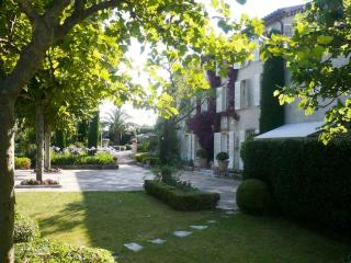 Beautiful exclusive villa in Mougins near Cannes - Mougins vacation rentals