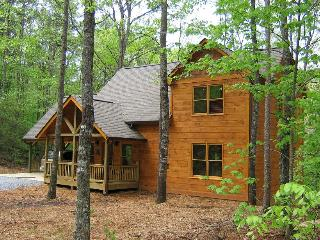 Mt Mist ~ Sleeps up to 6 - North Georgia Mountains vacation rentals