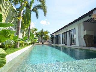 M-VILLA 3-BEDROOM  LARGE  POOL IN THE HEART OF SEMINYAK - Seminyak vacation rentals