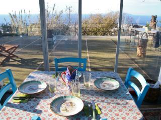 Capri- Lovely Villa with garden and panoramic view - Capri vacation rentals