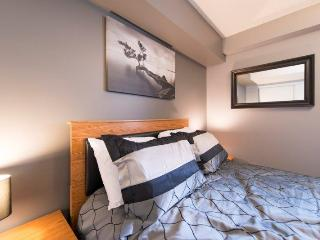 Downtown Gem 3 - Right Downtown - Niagara Falls vacation rentals