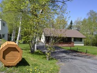 Appleton- Luxury 1500 sq ft home (Gander area) - Newfoundland and Labrador vacation rentals