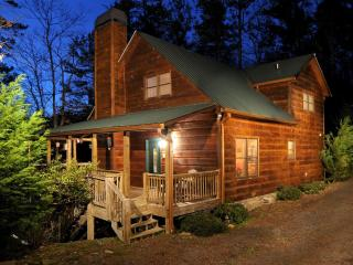 Mt Memories ~ Sleeps up to 13 ~ Pet Friendly! - Ellijay vacation rentals