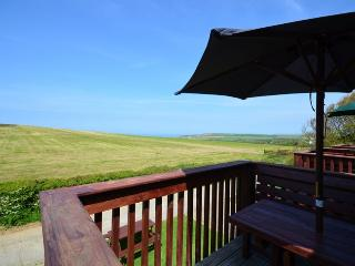 NEPTU - Widemouth Bay vacation rentals