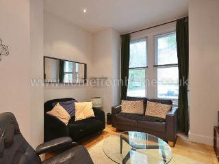 Modern 1 bedroom apartment with spacious outdoor area- Hammersmith - London vacation rentals
