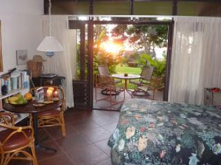 Kaluakoi Resort Oceanfront Condo, non-smoking unit - Maunaloa vacation rentals