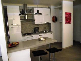 Apartment high level - Bologna vacation rentals