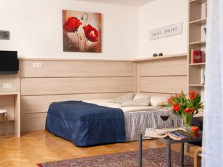 Comfortable garden studio ApH03 - Vienna vacation rentals