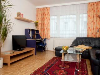 Spacious flat ApF21/7 - Vienna vacation rentals