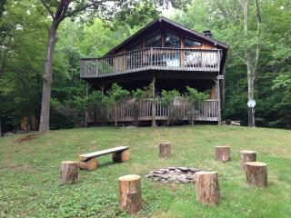 Charming Chalet, Fire Pit, The Perfect Getaway - Hunter vacation rentals