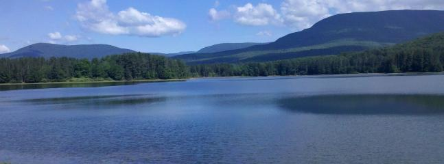Beautiful Cooper Lake walking distance to cottage - WOODSTOCK COOPER LAKE COTTAGE - Bearsville - rentals