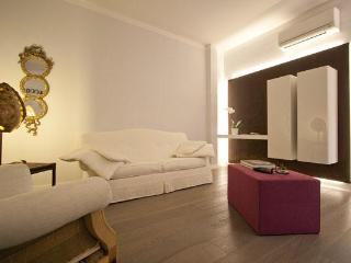 Charming Bobolicchio Apartment - Florence vacation rentals
