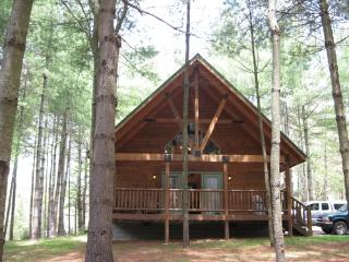 Cabins at Pine Haven-Roaring Rapids Cabin - Beckley vacation rentals