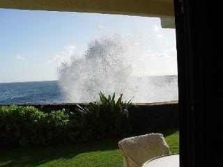 Roll out of bed and into the ocean at Poipu Shores 106A - Koloa-Poipu vacation rentals