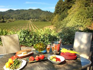 Vineyard Villa - Guerneville vacation rentals