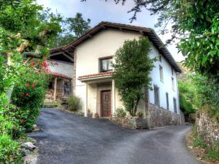 Traditional Asturian house in tranquil setting - Asturias vacation rentals