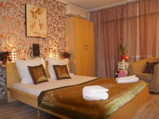 Cosy studio, downtown Bucharest, Royale Palace view - Bucharest vacation rentals