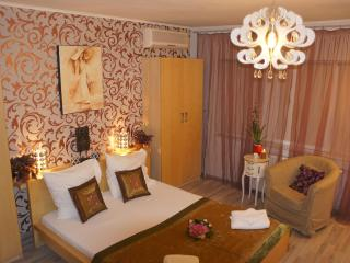 Studio on Calea Victoriei Avenue - Bucharest vacation rentals