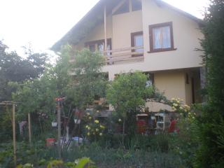House for rent in beautiful maramures - Maramures County vacation rentals