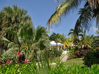 CoCoCondo - Your Caribbean Home away from Home - West Bay vacation rentals