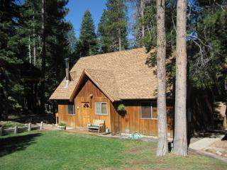 Beautiful Home Away From Home at Lake Tahoe - Truckee vacation rentals