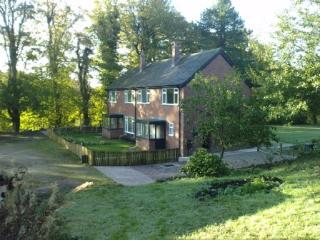 Beech Wood at Stockton Brook Waterworks - Staffordshire vacation rentals