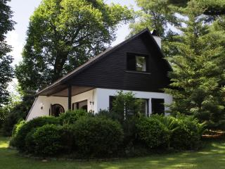Adventure holiday in the Ore Mountains on 1,000 sqm for 4 to 6 people - Drebach vacation rentals