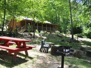 Amazing 4 Bedrm Cabin in the Heart of the Smokies - Smoky Mountains vacation rentals