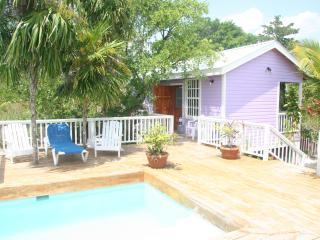 Weezie's Purple cottage 1 bedroom w swimming pool - Caye Caulker vacation rentals