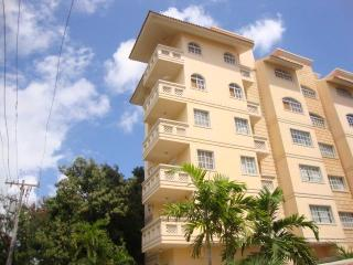 Beautiful new large 1 bedroom near Zona Colonial - Santo Domingo vacation rentals