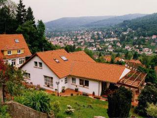Vacation Apartment in Heidelberg - 377 sqft, comfortable, central, quiet (# 3857) - Heidelberg vacation rentals