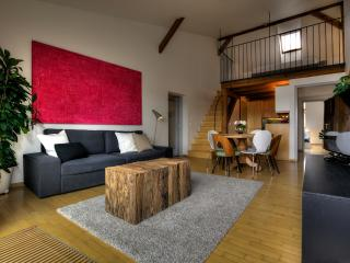 Wenceslas Terrace Apartment - Prague vacation rentals