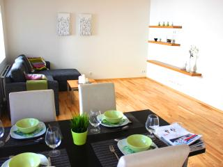Great apartment in down town Reykjavik, sleeps 4 - Reykjavik vacation rentals