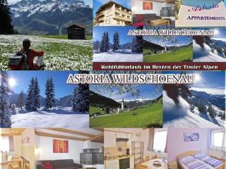 Appartement Astoria Rosskopf Tyrol Wildschönau Austria Kitzbühl Alps - Tirol vacation rentals