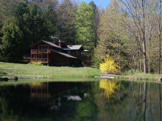 Secluded Hideaway, Pond, Fall Foliage, Ski Season - Hudson Valley vacation rentals